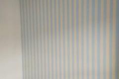 cc1a3477-fc30-4028-9753-ba6348e2a59b_v1